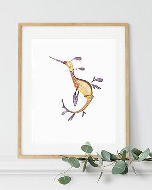 weedy-seadragon-framed-print-naomi%20vei