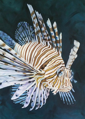 Lionfish painting by central coast artis