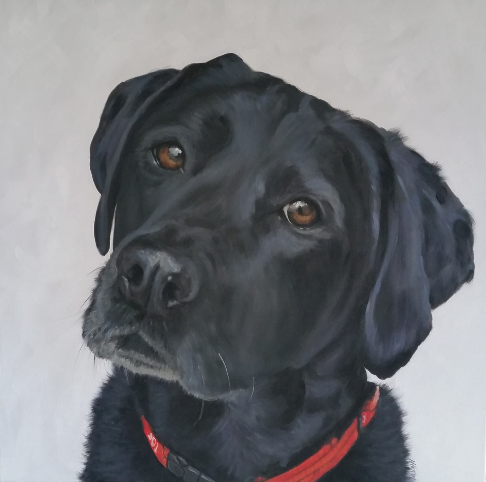 dog-portrait-painting-labrador.jpg