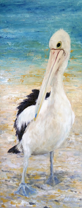 pelican-print-hokey-pokey-7x20-australia
