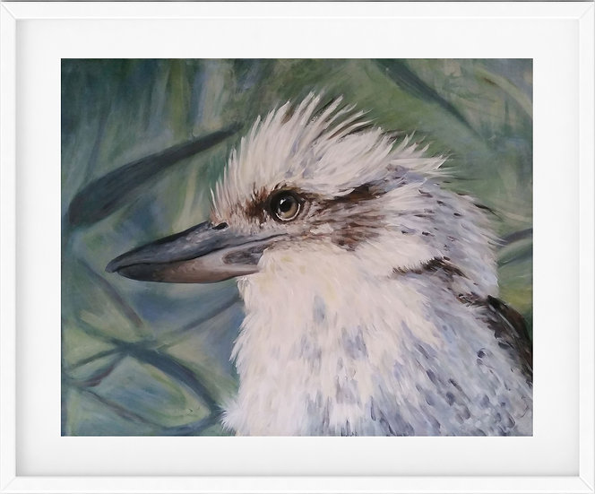 Kookaburra - limited edition print 6/100