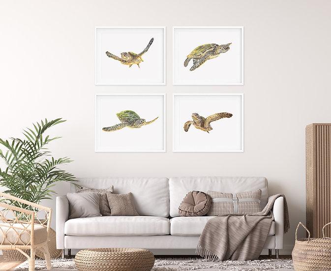 Turtle Print Set - Set of 4
