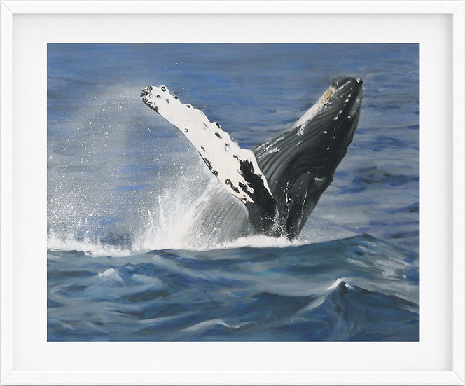 Humpback Whale - limited edition print 1/100