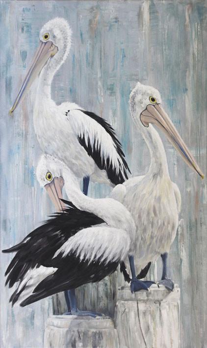 Australian pelican painting by Australia