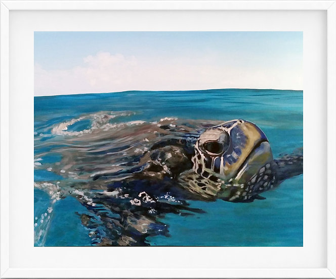 Sea Turtle - limited edition print 10/100