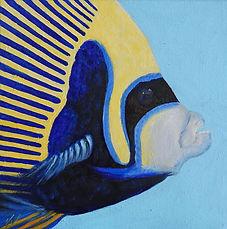 emperor-angelfish-paiting-naomi-veitch.j