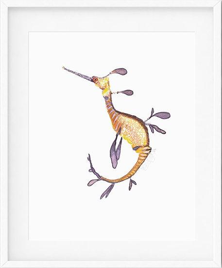 Weedy Seadragon - limited edition print 1/100