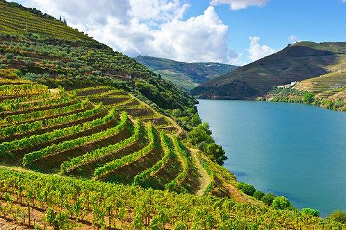 Best of Douro Valley Travel Plan