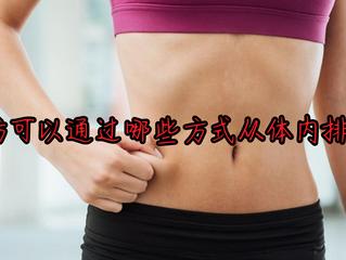 脂肪可以通過哪些方式從體內排出?