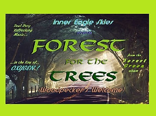 Forest for the Trees (Thumb) 5 Frame B.j