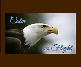 KALM IN FLIGHT w EAGLE 1.png