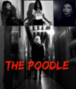 THE POODLE11ace838autosavefialct_Moment.