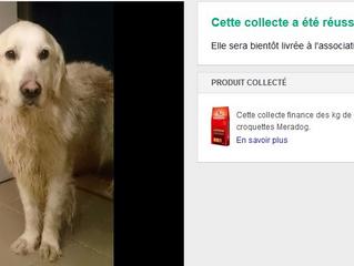 La collecte de croquettes (pour Elene) REUSSIE  sur Animal Webaction !!!