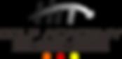 hitgolfacademy logo