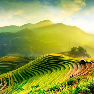 Rice Husk Energy & Silica