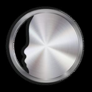 100 FACE Metallic - Platinum TWO.png