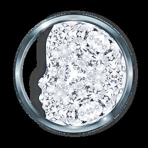 100 FACE Metallic - Diamond.png