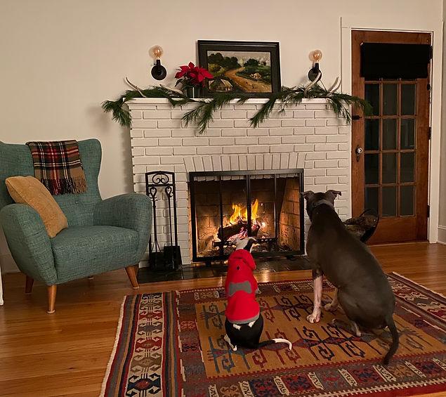 Holiday photo.jpg