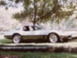 1981 Corvette on the ranch Randysmobiledetailing.com