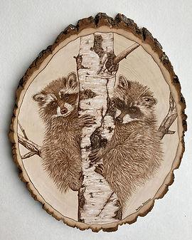 Debbie Jonson racoons.jpg