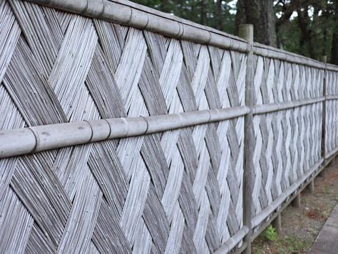 'Numazu-gaki' is a bamboo hedge characteristic of Numazu area, Shizuoka Prefecture.