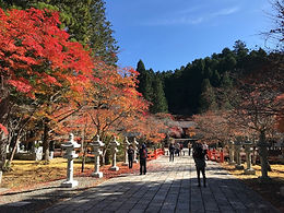 The arrival of autumn in Mt. Koyo is earlier than the midtown area of Kyoto.