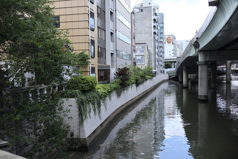There used to stand a fish market along the riverbank of the Nihonbashi, Tokyo.
