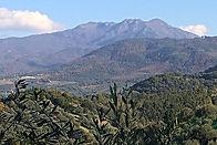 Monte Gelbison Cilento