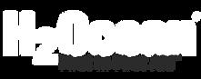 h2ocean-logo-white.png