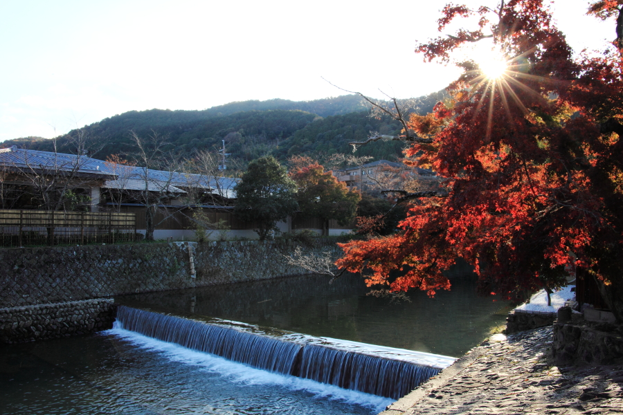 Kyoto014