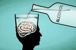 Alcohol and the brain.jpg