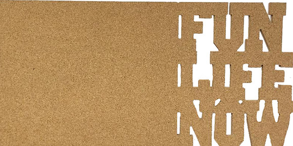 F.U.N. Life Now Cork Vision Board