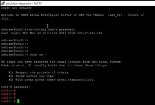 Create Custom Monitor for  monitoring VIDM Service from Load Balancer