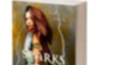 3d-book-templatecalcover_orig.jpg