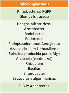 microorganismos guanovit.png