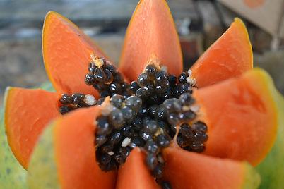 papaya-966322_1920.jpg