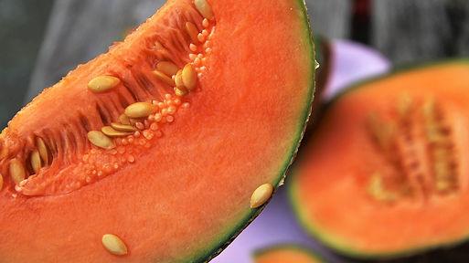 melon guanovit.jpg
