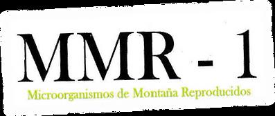 MMR-1.png