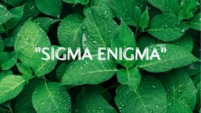 """Sigma Enigma"""