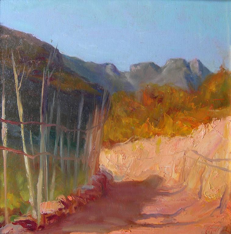 La valle di Pomonte