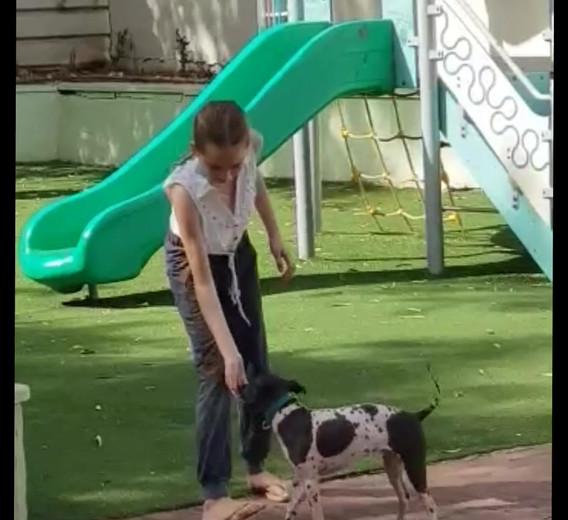 Arya training