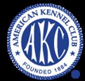 AKC1.png