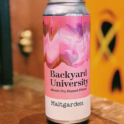 Backyard University - Mosaic Dry Hopped Pilsner 5%