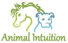 Animal Intuition.jpg