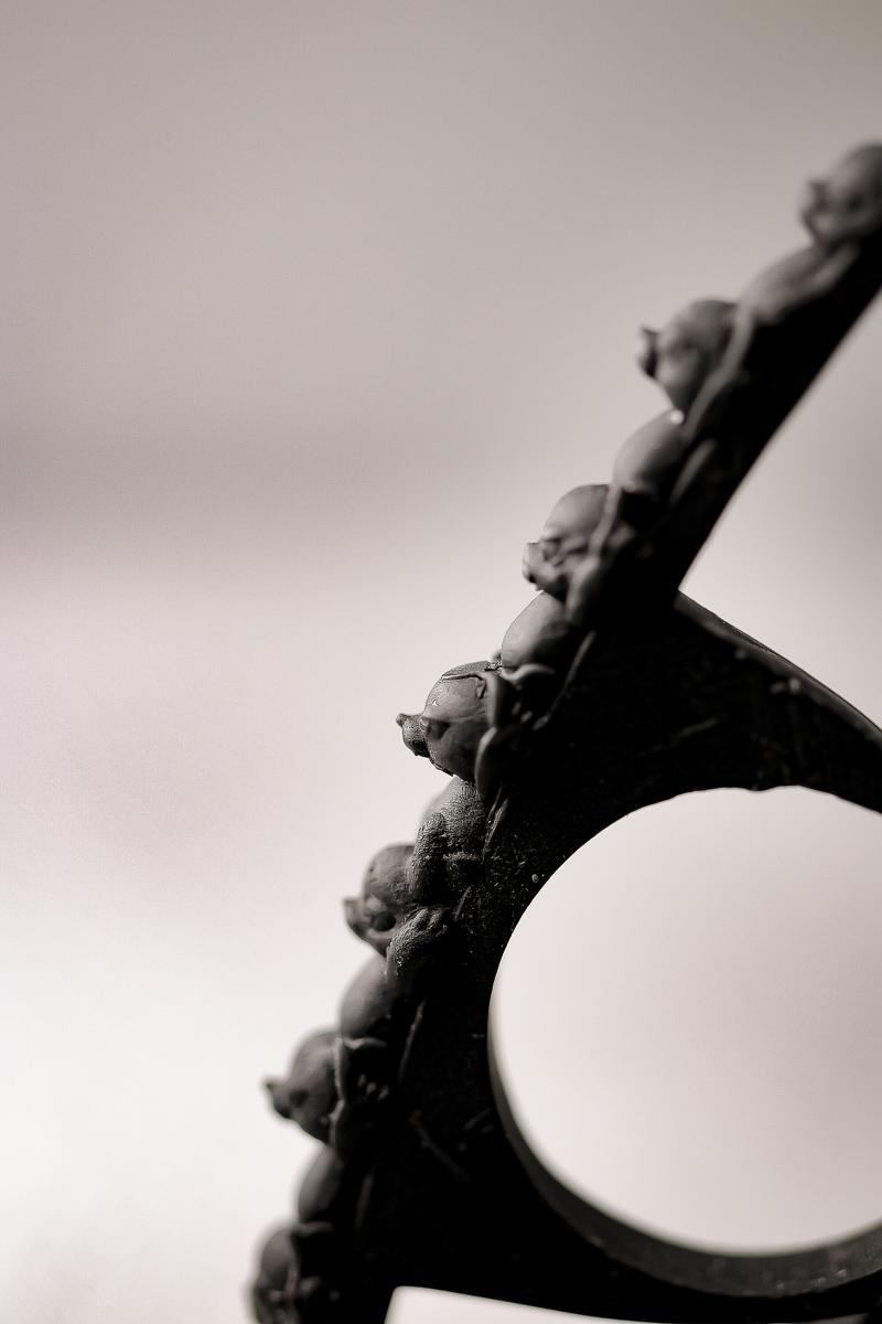 一線、歓喜 / Animal connections ring