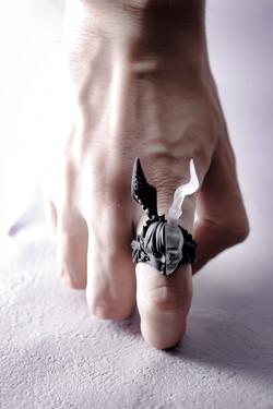 死と再生 _ Death and Reborn ring