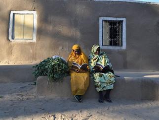 Amara West: Living in New Kingdom Nubia