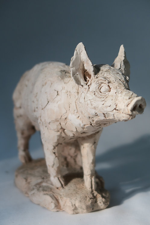 Pig Against Trunk