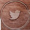 social_twitter_100px