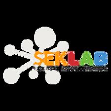 Spain Semifinal by SEK Lab